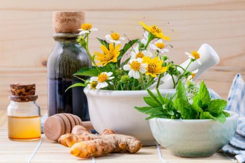 Herbs For Uterine Prolapse
