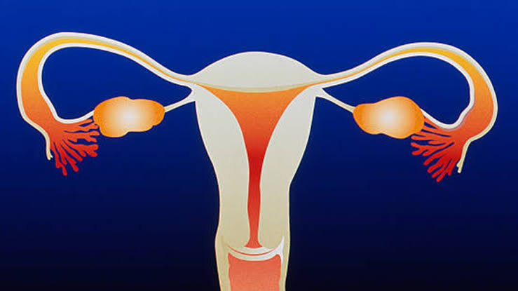 How Do You Know If Your Uterus Is Falling?